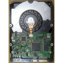 HDD Sun 500G 500Gb в Дзержинском, FRU 540-7889-01 в Дзержинском, BASE 390-0383-04 в Дзержинском, AssyID 0069FMT-1010 в Дзержинском, HUA7250SBSUN500G (Дзержинский)
