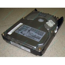 Жесткий диск 18.4Gb Quantum Atlas 10K III U160 SCSI (Дзержинский)