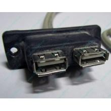USB-разъемы HP 451784-001 (459184-001) для корпуса HP 5U tower (Дзержинский)