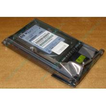 Жёсткий диск 146.8Gb HP 365695-008 404708-001 BD14689BB9 256716-B22 MAW3147NC 10000 rpm Ultra320 Wide SCSI купить в Дзержинском, цена (Дзержинский).